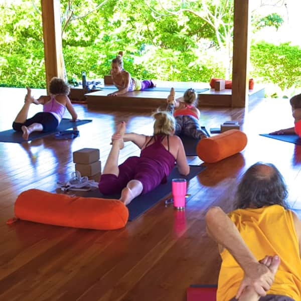 Morning Vinyasa Practice, Aligning with the Elements and Our True Nature