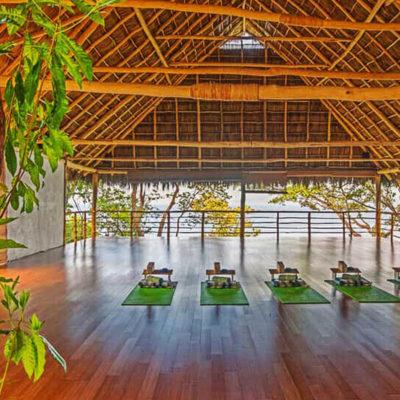 Yin, Aerial & Restorative Yoga